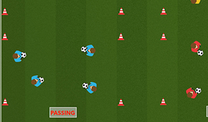Various Skills - Tactical Soccer